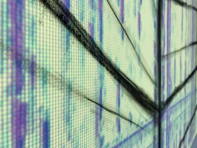 Spectrogram 4
